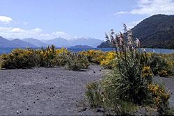 Чили, туры в Чили